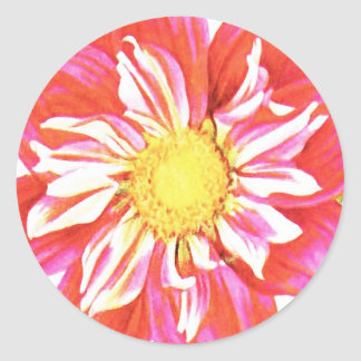 Coral red and white striped dahlia print classic round sticker