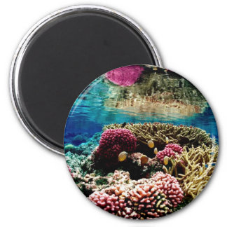 Coral Reef 2 Inch Round Magnet