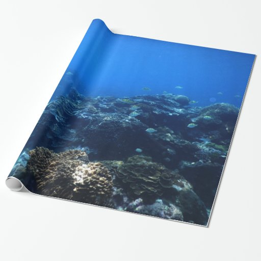 Coral reef and tropical fish wrapping paper zazzle for Fish wrapping paper