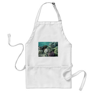 Coral reef adult apron
