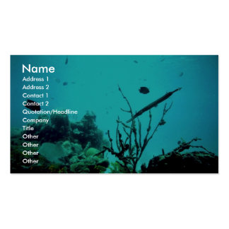 Coral Reef Double-Sided Standard Business Cards (Pack Of 100)