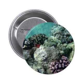 Coral reef pin