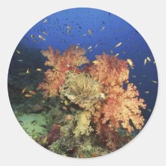 Coral Reef Classic Round Sticker