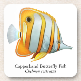 Coral Reef Copperband Butterfly Fish Cork Coaster