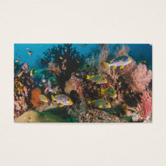 Coral Reef custom business cards