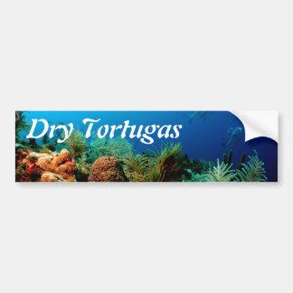 Coral Reef, Dry Tortugas National Park, Florida Car Bumper Sticker
