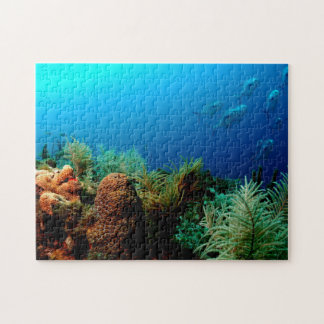 Coral Reef, Dry Tortugas National Park, Florida Jigsaw Puzzle