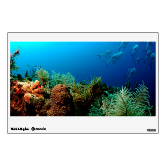 Coral Reef, Dry Tortugas National Park, Florida Wall Decal