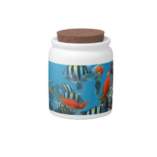 Coral Reef Fish Naturescape Candy Jars