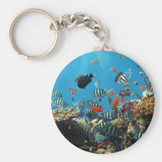 Coral Reef Fish Naturescape Keychains