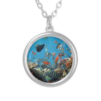 Coral Reef Fish Naturescape Pendants
