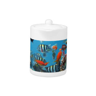 Coral Reef Fish Naturescape