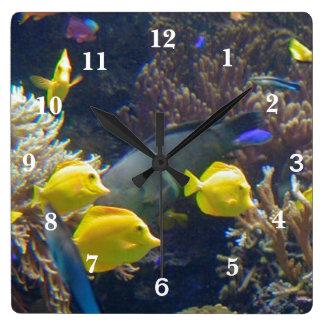 Coral Reef Fish Square Wall Clock