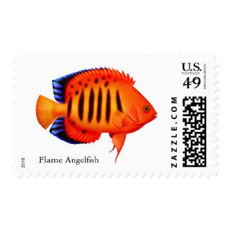 Coral Reef Flame Angelfish Postage