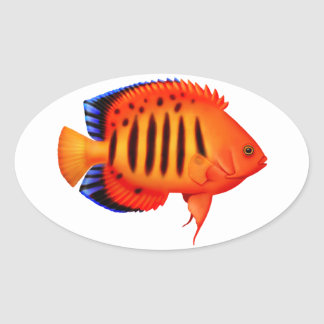 Coral Reef Flame Angelfish Sticker