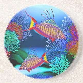 Coral Reef Flasher Wrasse Fish Coaster
