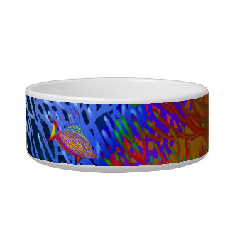 Coral Reef Flasher Wrasse Fish Pet Bowl