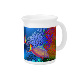 Coral Reef Flasher Wrasse Fish Pitcher