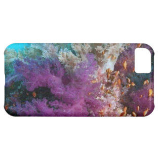Coral Reef Habitat iPhone 5C Case