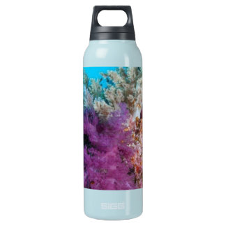 Coral Reef Habitat Insulated Water Bottle