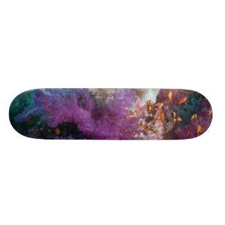 Coral Reef Habitat Skateboard Deck
