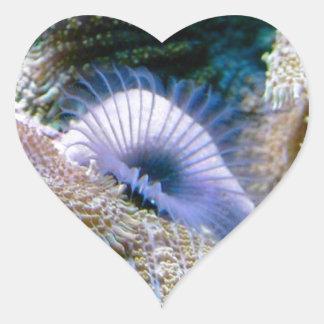 Coral reef heart sticker