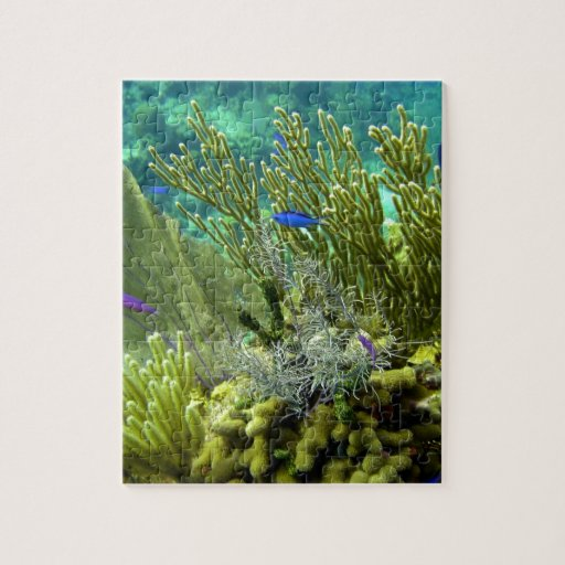 Coral Reef Jigsaw Puzzle