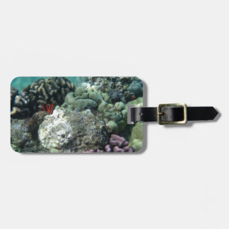 Coral reef tag for bags