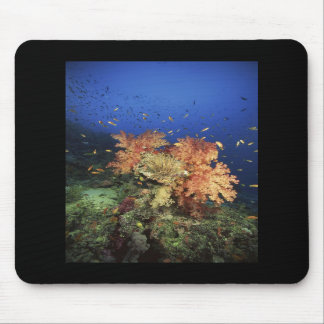 Coral Reef Mouse Pads