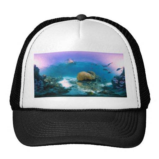 Coral Reef Near Heron Island Trucker Hat