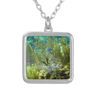 Coral reef jewelry