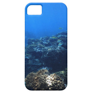 Coral Reef of Bakaro Beach iPhone 5 Cases