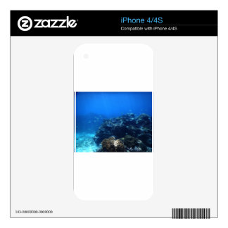 Coral Reef of Bakaro Beach Decal For iPhone 4
