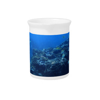 Coral Reef of Bakaro Beach Drink Pitchers