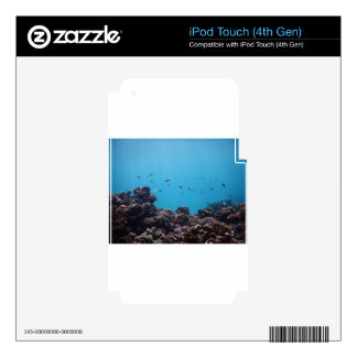 Coral Reef of Pacific Ocean Decal For iPod Touch 4G