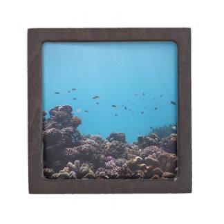 Coral Reef of Pacific Ocean Keepsake Box