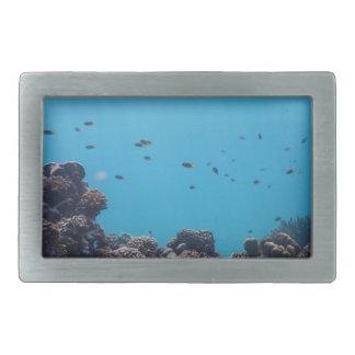 Coral Reef of Pacific Ocean Rectangular Belt Buckle