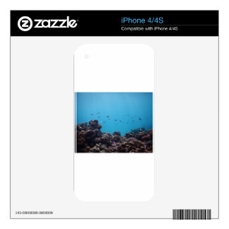 Coral Reef of Pacific Ocean Skin For The iPhone 4