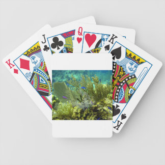 Coral reef bicycle playing cards