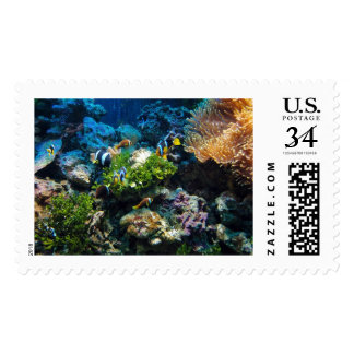 Coral Reef postage stamps