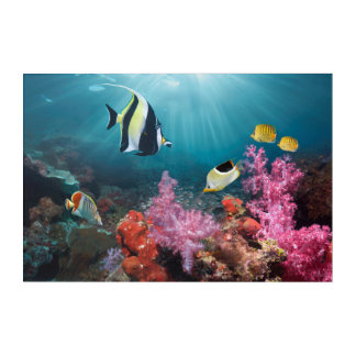 Coral Reef Scenery | Moorish Idol Acrylic Wall Art