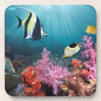 Coral Reef Scenery   Moorish Idol Beverage Coaster
