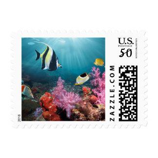 Coral Reef Scenery   Moorish Idol Postage