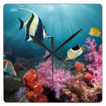 Coral Reef Scenery   Moorish Idol Square Wall Clock