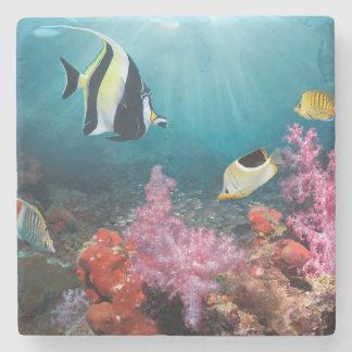 Coral Reef Scenery   Moorish Idol Stone Coaster
