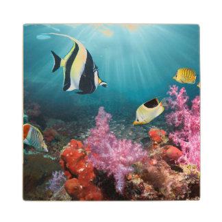 Coral Reef Scenery   Moorish Idol Wood Coaster