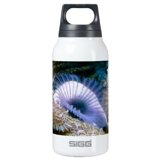 Coral reef SIGG thermo 0.3L insulated bottle