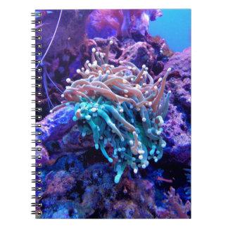 Coral Reef Spiral Notebook