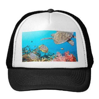 Coral Reef Turtle Naturescape Mesh Hat