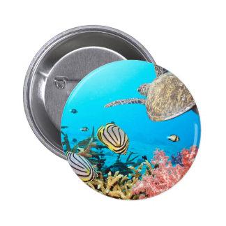 Coral Reef Turtle Naturescape Pinback Button